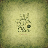 Olive labels design Royalty Free Stock Photo