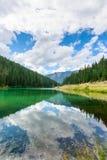 Olive Lake Stock Foto's