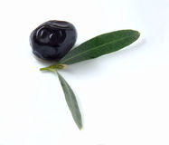 Olive and leaf Royalty Free Stock Photo