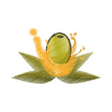 Olive leaves oil splash drawing. Vector illustration eps 10 Royalty Free Stock Photos
