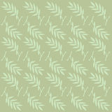 Olive light green. Background on a olive light green Royalty Free Stock Photos