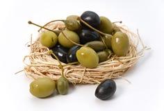 Olive nel nido Fotografia Stock Libera da Diritti