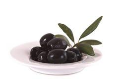 Olive nere con la filiale Fotografia Stock Libera da Diritti
