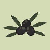 Olive nere dell'icona piana Fotografia Stock