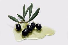 Olive nere mature con le foglie immagine stock