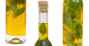 Olive oil. Basil infused olive oil - pure white background Royalty Free Stock Image