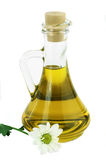 Olive oil. On a white background Royalty Free Stock Image