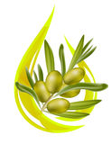 Olive oil. Stylized drop of oil, and olive branch inside Stock Image