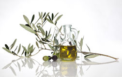 Olive oil. And olive tree branch Stock Photos