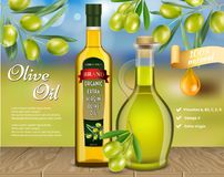 Olive oil advertising vector realistic template. Olive oil advertising template. Vector realistic olive oil glass bottle and jug with olive branches and copy royalty free illustration