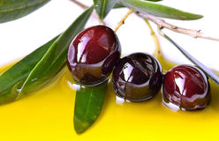 Free Olive Oil And Branch Of Fresh Olives Royalty Free Stock Images - 35563139