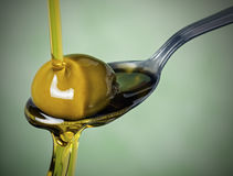 Olive oil Stock Photography