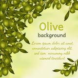 Olive oil background Stock Photography