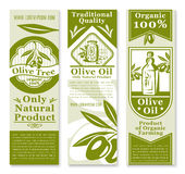 Olive oil banner with green fruit and branch. Olive oil and fruit banner template. Green branches of olive tree with fruit and leaf, bottle of oil and table stock illustration