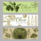 Olive Oil Banner Set disegnata a mano Fotografia Stock