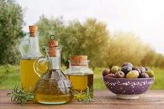 Olive oil and berries Royalty Free Stock Photos