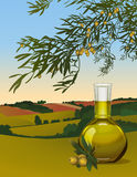Olive oil in a bottle Stock Photo