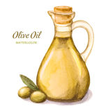 Olive oil stock illustration