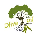 Olive oil bottle and product label templates. Vector icons of green olives branch and extra virgin natural organic oil. For farm store or market, cooking and vector illustration