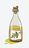 Olive Oil Bottle Sketch Royalty-vrije Stock Foto's