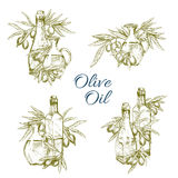 Olive oil bottles vector sketch icons set Royalty Free Stock Image