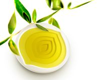 Olive oil bowl with olive oil and leaves Stock Photos