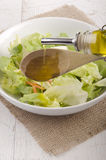 Olive oil in a bowl with salad Royalty Free Stock Photos
