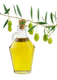 Olive oil and branch of an olive tree. 