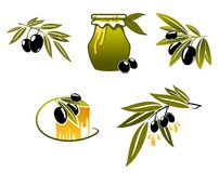 Olive oil and branchs Royalty Free Stock Image