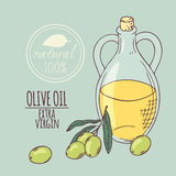 Olive oil carafe with olive branch. Hand drawn Stock Image