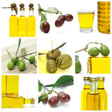 Olive oil collage. A collage of nine pictures of many olives and olive oil bottles Royalty Free Stock Image