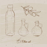 Olive oil collection. Olive oil set in vintage style, vector sketches of olive oil bottles Royalty Free Stock Images