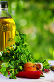 Olive oil and condiments Royalty Free Stock Photography