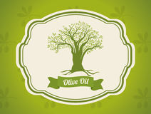 Olive oil design. Royalty Free Stock Photos