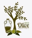 Olive oil design. Stock Images