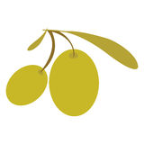 Olive oil design Royalty Free Stock Photo