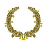 Olive oil design Royalty Free Stock Image