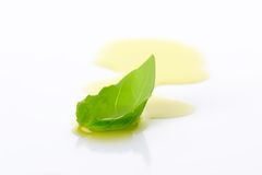 Olive oil drizzle and basil leaf Stock Images