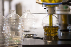 Olive oil factory, Olive Production Royalty Free Stock Photo