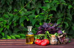 Olive oil, fragrant herbs and tomatoes. Fresh basil and tomatoes. Ingredients for summer salad. Royalty Free Stock Image