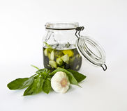 Olive oil with fresh herbs and garlic Stock Photos