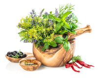 Olive oil with fresh herbs and spieces dill, rosemary, basil, mi Royalty Free Stock Images