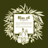Olive oil and fruit sketch poster with copy space Stock Image