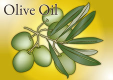 Olive oil fruits composition. Olive oil fruit, file composition stock illustration