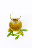 Olive oil in glass carafe Royalty Free Stock Image