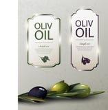 Olive Oil Glossy Brand Logos Fotografia Stock Libera da Diritti