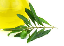 Olive oil and green olive baranch Royalty Free Stock Images