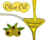 Olive oil hand drawn illustration. Olive oil flowing in the spoon hand drawn illustration. Olive branch. Sketch style. Vector EPS10 Royalty Free Stock Image