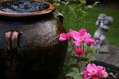 Olive oil jar used as water fountain in garden with roses in foreground and stone cherub in background stock images