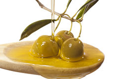 Olive oil jet Stock Images